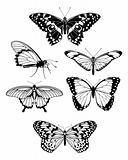 Beautiful stylized butterfly outline silhouettes