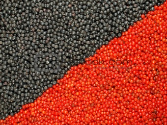 Background from black and red berries
