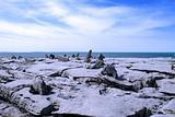 boulders standing in rocky burren landscape