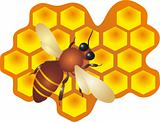 Bee vector