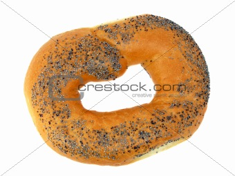 A delicious bagel with poppy seeds isolated on a white background