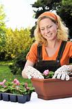 Young woman gardening - planting flowers