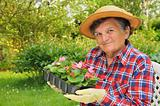 Senior woman - gardening