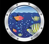 porthole and colorful fishes