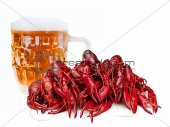 crawfishes