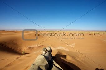 Relaxing in the dunes