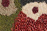 beans, legumes assortment