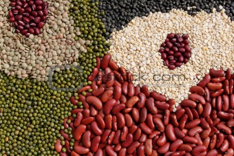 beans, legumes assortment