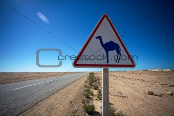 Camel Crossing Sign