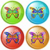 Butterfly, button