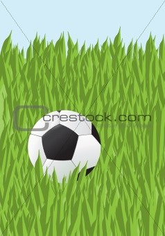 Football in a grass