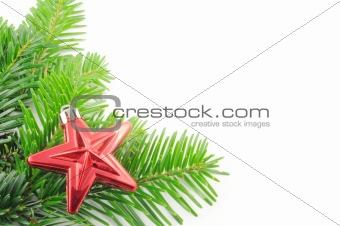 green fir for christmas