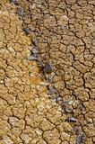 Cracked dry ground texture