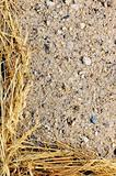 Detail of dry grass hay and sand - frame