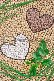Lentils, soybeans, beans with herbs - pulse concept