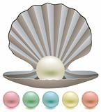 pearls and a shell