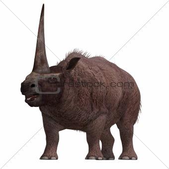 Dinosaur Elasmotherium