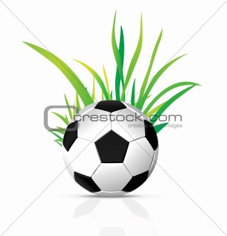 vector soccer ball