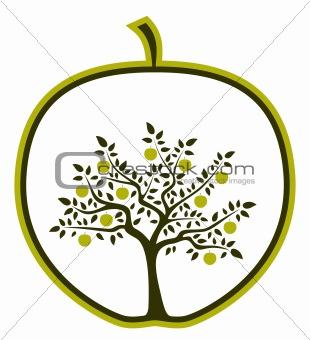 apple tree in apple