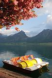 pedal boat on lake