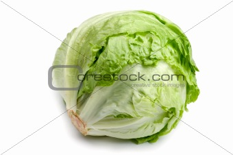 cabbage on white close up