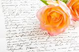 Red yellow rose over a hand written letter