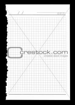 Torn notebook sheet