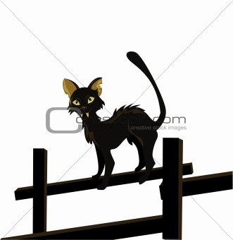 cartoon vector image of black cat isolated on white