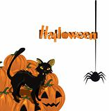 Halloween card with kitten and pumpkin