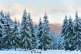 winter sunset mountain landscape