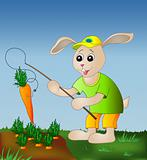 Rabbit fishing carrot
