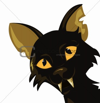 illustration of a black cat on white background