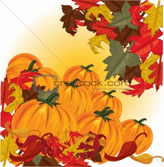 autumn pumpkins and colorful leaves