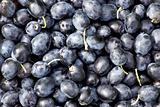 Black olives  background.
