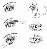 eye lash face woman cosmetic make-up icons set