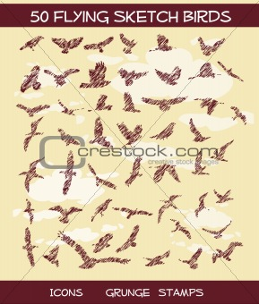 50 Grunge Sketchy Birds on sky background
