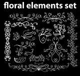 floral elements set vector design elements
