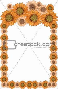beautiful yellow Sunflower border