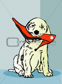 little dog with womans shoe, pet, cartoon animal