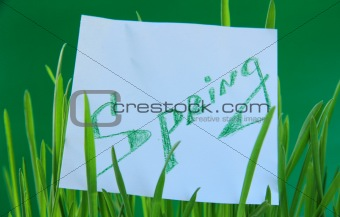 "Green grass with a sticker ""Spring"""