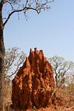 Termite mound