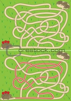 Hedgehog maze