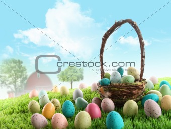 Colorful easter eggs in field of grass