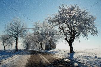 winter scene with snow, sun and blue sky