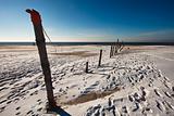 Fence at the Danish North Sea coast