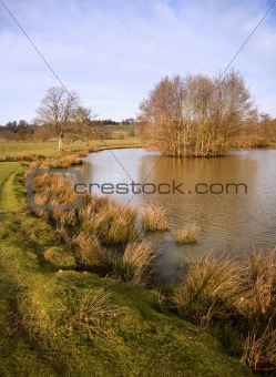Beautiful morning light view across countryside pond landscape