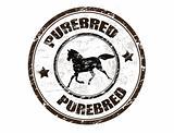 Purebred horse stamp