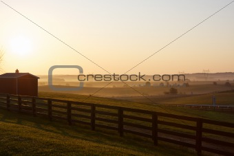 Farm Field