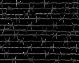 Lines of barbed wire on black background