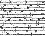 Lines of barbed wire